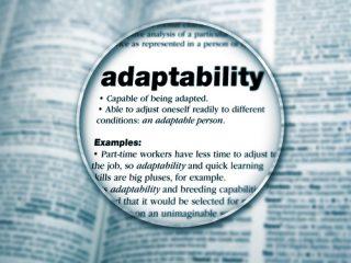 Abalia_Filosofia_Flexibilidad_3